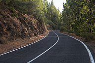 Spain, Tenerife, empty road, forest - SIPF000780