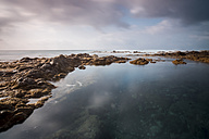 Spain, Tenerife, rocky coast - SIPF000786