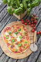Vegetarian pizza with mozzarella and tomatoes - SARF002852