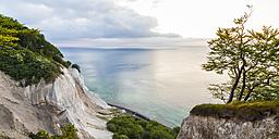 Denmark, Mon Island, Mons Klint, Chalk cliffs - WDF003714