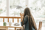 Back view of woman sitting at table at home looking through window - KNSF000336