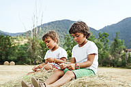 Two little boys sitting on bale of straw - VABF000755