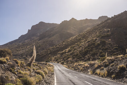 Spain, Tenerife, landscape and road on Teide - SIPF000792