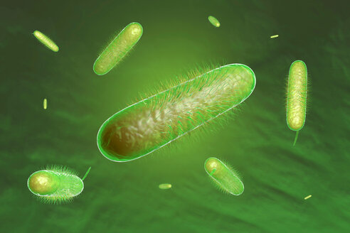 3D rendered illustration of bacterias - SPCF000116