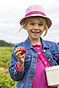 Portrait of happy little girl holding box and strawberry on a strawberry field - JFEF000807