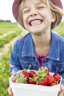 Grinning little girl holding box of strawberries on a strawberry field - JFEF000810
