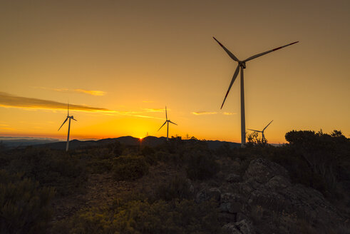 Wind turbines on a hill at sunrise - OPF000141