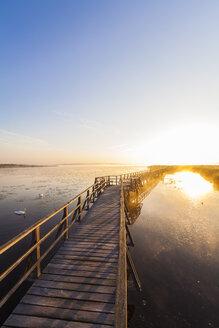 Germany, Bad Buchau, Lake Feder, wooden boardwalk in the morning - WDF003735