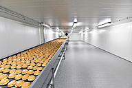 Production line in a baking factory with Berliners - LYF000554