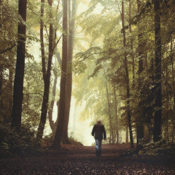 Germany, Man walking in forest - DWIF000787