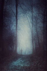 Silhuette of man standing in forest - DWIF000790