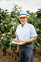 Portrait of senior man with harvested figs - JRFF000864