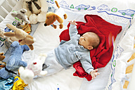 Two-weeks old baby boy in playpen - MFF003135