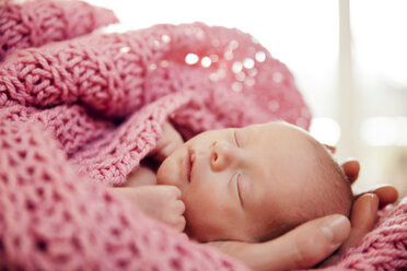 Hands holding head of a newborn baby in a pink wook blanket - MFF003195