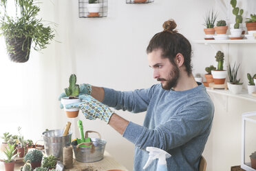 Young man transplanting cactus in his studio - RTBF00374
