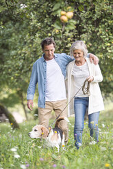 Senior couple on a walk with dog in nature - HAPF00862