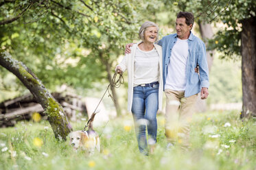 Senior couple on a walk with dog in nature - HAPF00865