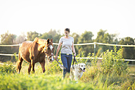 Young woman walking with horse and dog - MAEF12035