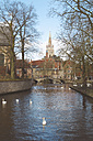 Belgium, Bruges, swans on a canal - RTBF00386