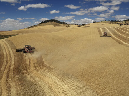 USA, Washington State, Palouse hills, wheat field and combine harvesters - BCDF00018