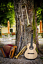 Various musical instruments leaning at tree in a beer garden - HAMF00213