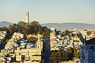 USA, California, San Francisco, view from Russian Hill on Telegraph Hill with Coit Tower - BRF01386