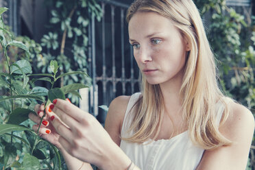 Young woman looking at plants on mediterranean terrace - MFF03379