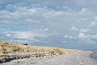 Denmark, Hals, dunes and beach - MJF02026