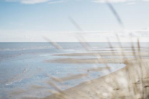 Denmark, Hals, beach - MJF02029