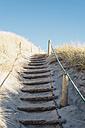 Denmark, Hirtshals, path through dunes - MJF02068