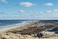 Denmark, North Jutland, dune landscape at Bulbjerg - MJ02071
