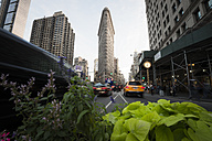 USA, New York City, Flatiron Building - STC00271