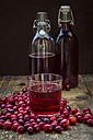 Cranberries and cranberry juice - LVF05374