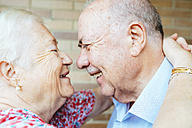 Laughing senior couple face to face - GEMF01107