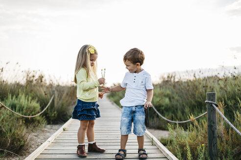 Little boy gifting little girl flowers on boardwalk in nature - JRFF00870