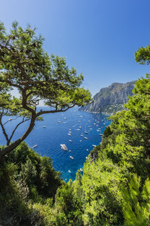 Italy, Capri, View to bay of Capri - THAF01805