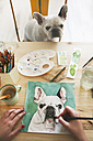 Hand's of artist painting an aquarelle of her French bulldog - RTBF00448