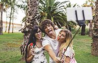 Playful friends in park taking a selfie using selfie stick - DAPF00401