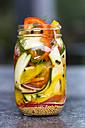 Pickeled vegetables and herbs in preserving jars - SARF02980