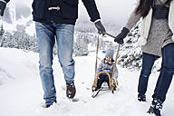 Family with sledge in winter landscape - HAPF00947