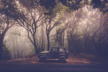 Spain, Tenerife, off-road vehicle parked at the roadside in forest - SIP00926