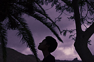 Silhouette of woman's head in nature - SIPF00931