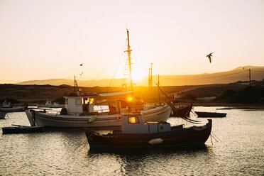 Greece, Koufonissi, Boats at fishing port at sunset - GEMF01158