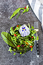 Bowl of wild-herb salad with edible flowers, cranberries and wolfberries - SARF03005