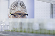 Woman in lab wearing protective clothing looking at plant samples - ZEF10854