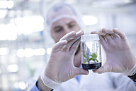 Scientist in lab holding plant sample - ZEF10857
