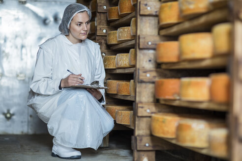 Cheese factory worker controlling maturation of cheese - ZEF11026
