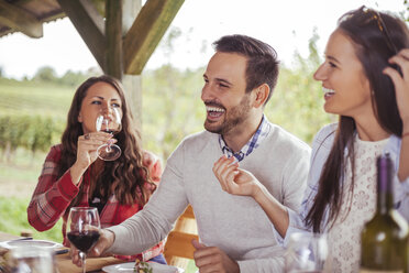 Friends socializing at outdoor table with red wine - ZEDF00399