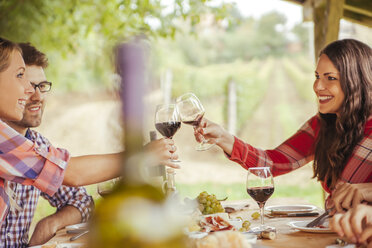 Friends clinking red wine glasses at table in vineyard - ZEDF00411