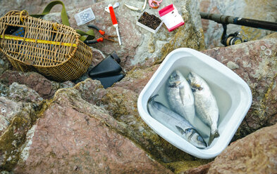 Bucket with caught fish and fishing equipment on rock - DAPF00442